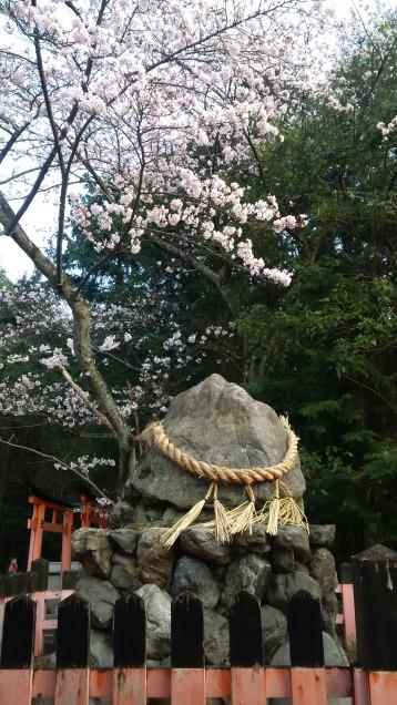 kitsune5 - budha rock