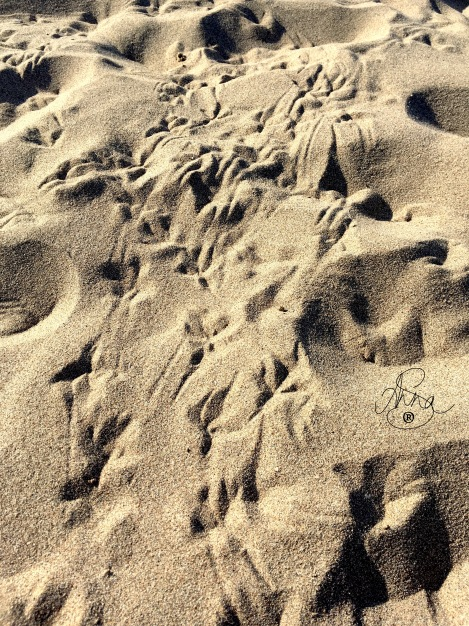 arena de Castelldefells