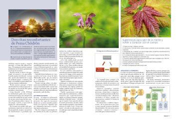 cambios-vitales-page-002