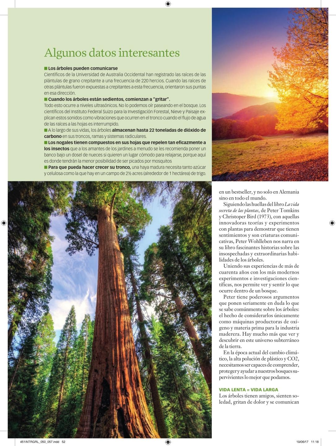 451INTRGRL_050_057_vida secreta de los árboles_000003