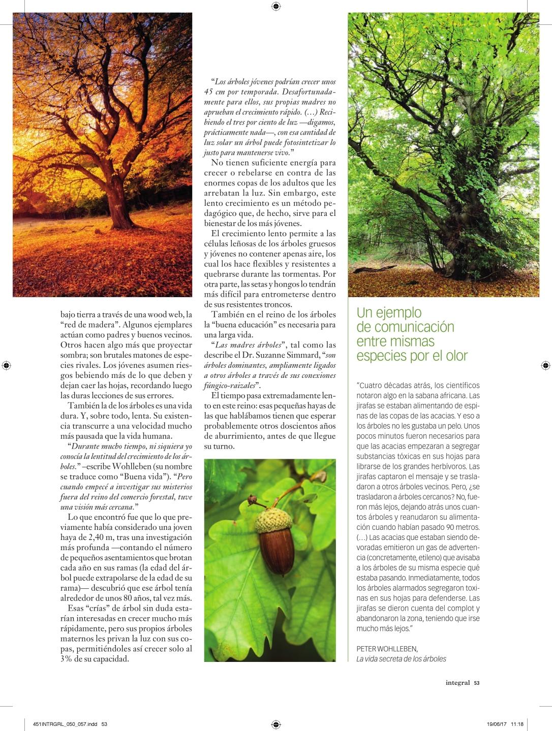 451INTRGRL_050_057_vida secreta de los árboles_000004