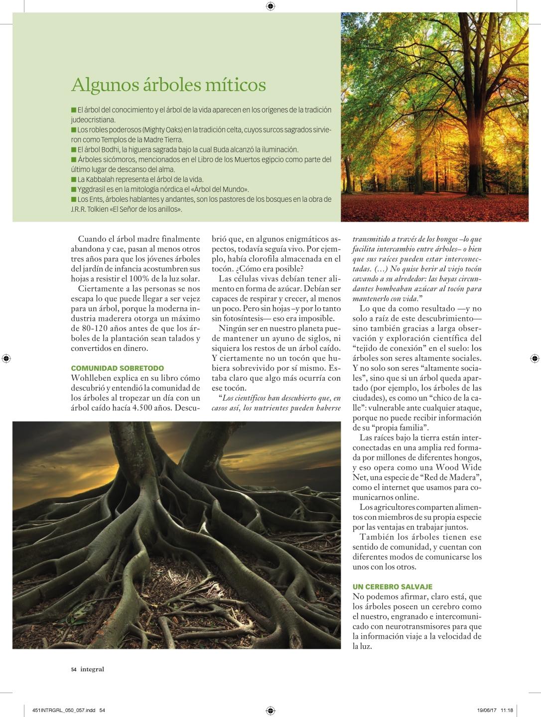 451INTRGRL_050_057_vida secreta de los árboles_000005