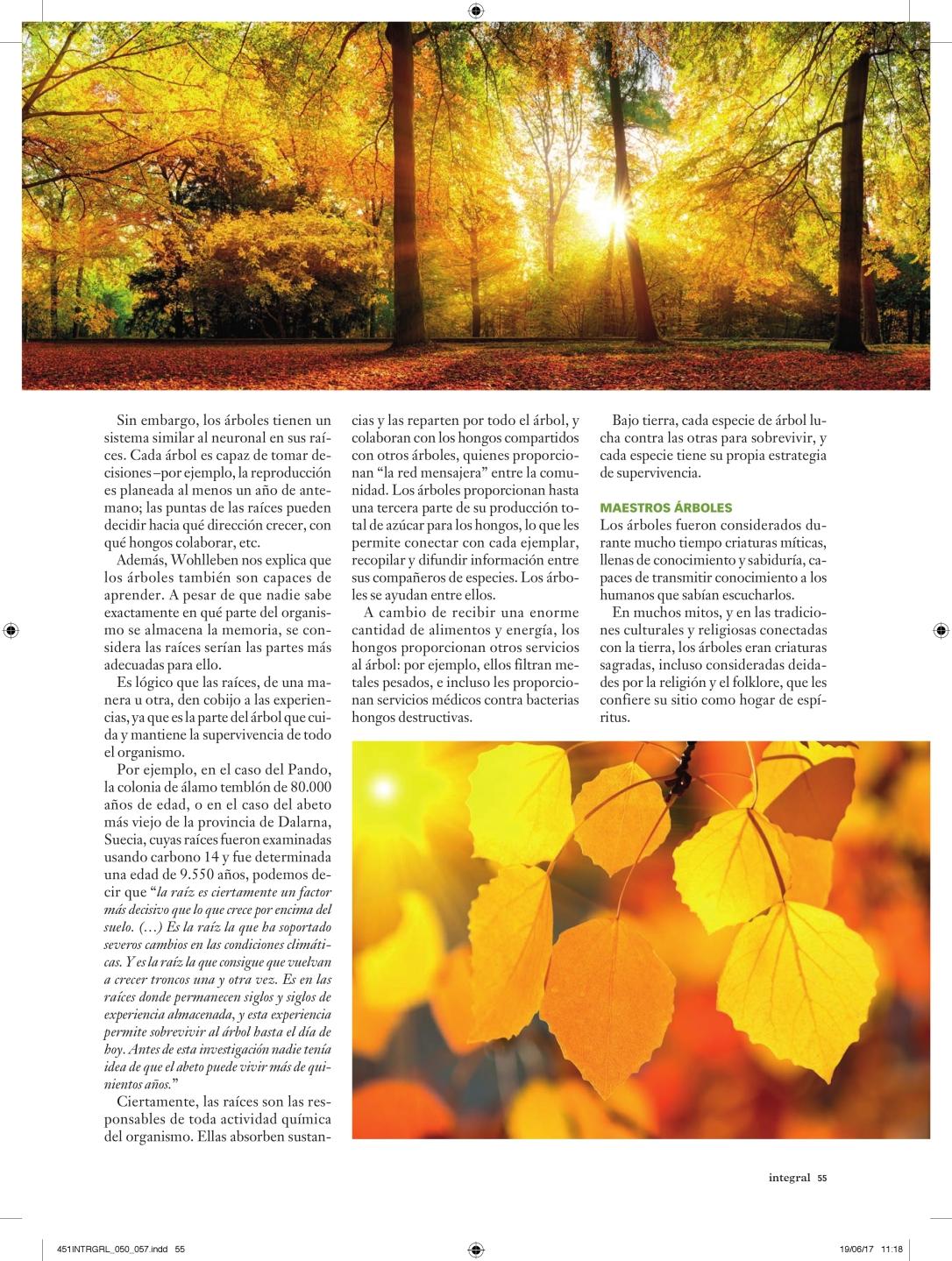 451INTRGRL_050_057_vida secreta de los árboles_000006