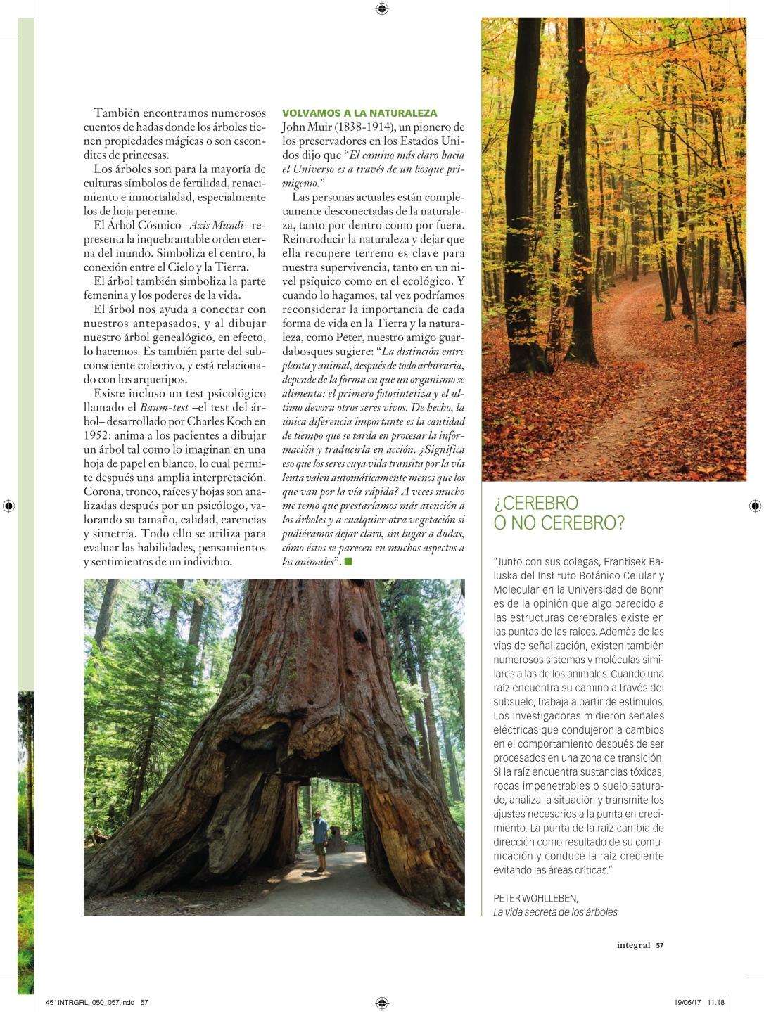 451INTRGRL_050_057_vida secreta de los árboles_000008